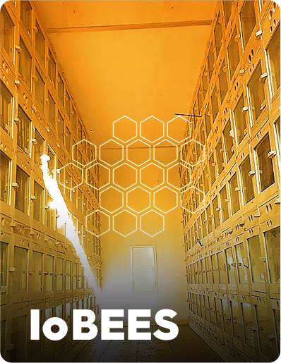 IoBees Automated Bee Colony